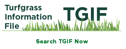 Search TGIF now