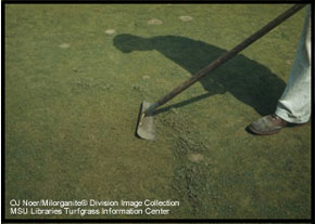 shadow of man holding a hoe on a golf course